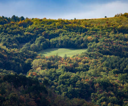 A high angle shot of a beautiful landscape with a forest in the mountains of Istria, Croatia