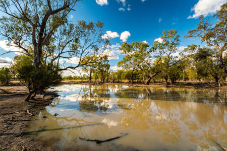 A series of 10 images taken in outback NSW, Australia, depicting the hardships of life under drought conditions. Artesian Bore & irrigation channel.