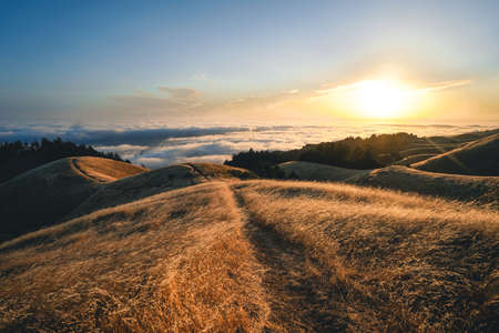 A breathtaking view of the mountains under the sun light captured in Mt. Tam in San Francisco