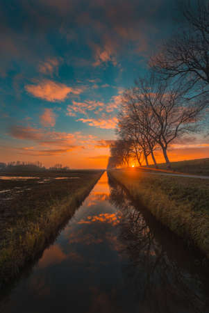 A vertical shot of the reflection of sunset and trees in a river captured in Zeeland, Netherlands