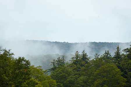 Morning Fog in the Green Mountains of Vermont