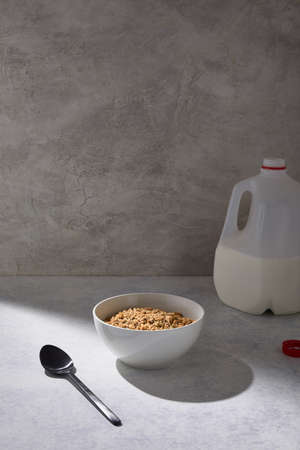 A bowl of cereal near a gallon of milk on a white table near a white wall