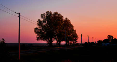 A scenic view of the colorful sunset with two trees standing by the side of a road
