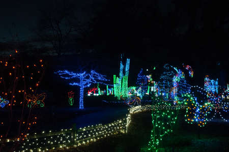 Christmas lights at the Detroit Zoo