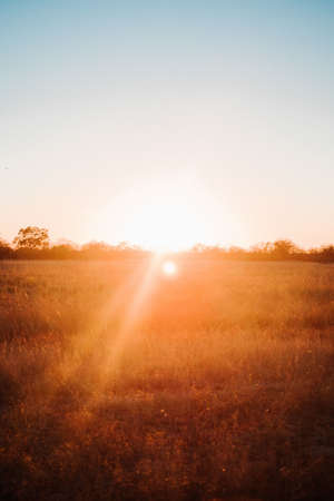 The sun shining over a field spreading warmth and joy around Stock Photo
