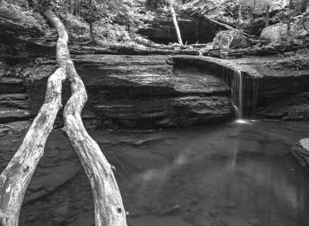 A greyscale of a waterfall in the Cloudland Canyon State Park surrounded by greenery in the US Stock Photo