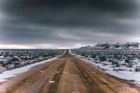 An empty road in the middle of a snowy field with bushes under a dark cloudy sky Фото со стока