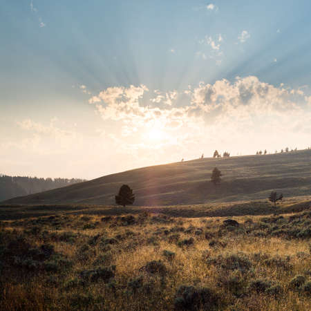 A beautiful scenery of a landscape in Yellowstone with mountains and the sunrise in the background Фото со стока