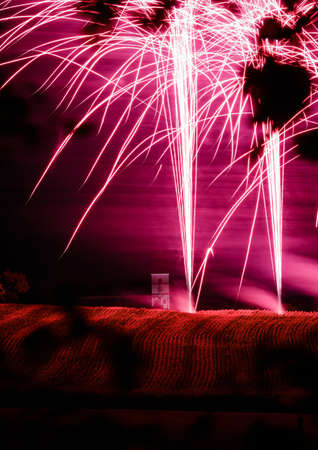 A vertical shot of pink fireworks glaring up in the night sky