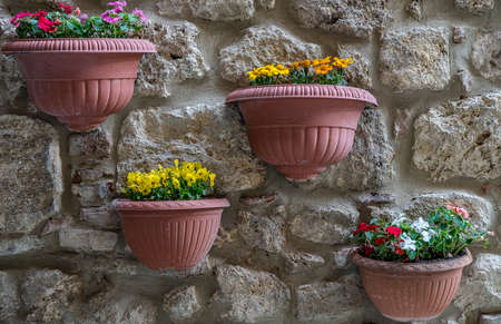 A closeup shot of pots with colorful flowers hanged on a cobblestone wall Stock fotó