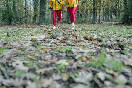 An amazing shot of two women in yellow jackets and pink leggings jogging in a forest on a gloomy day Stock fotó