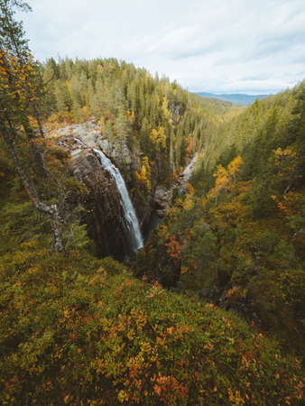 A vertical shot of a waterfall surrounded by a lot of trees with autumn colors in Norway