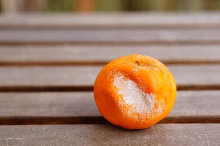 A closeup shot of a rotten tangerine on a wooden surface