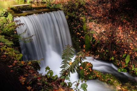 A high angle shot of a waterfall in a forest in Karuizawa. Tokyo, Japan