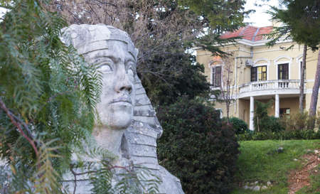 A closeup shot of a decorative Sphinx head statue in between green plants and bushes