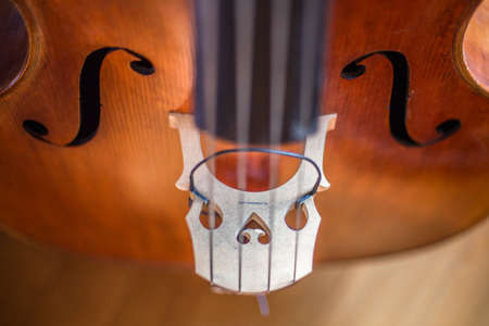 A closeup shot of a string of a violin with a blurred background