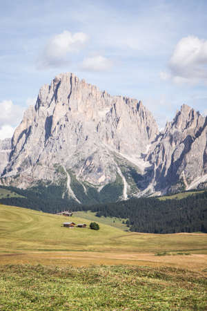 A vertical shot of Seiser Alm - Alpe di Siusi with wide pasture in Compatsch Italy