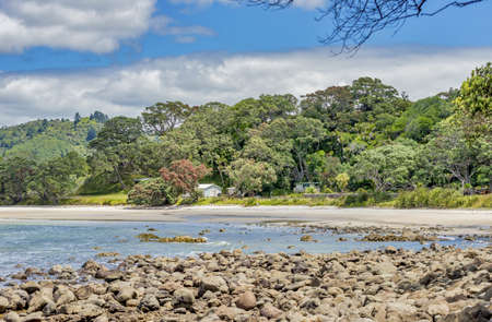 A beautiful scenery of rock formations and green plants at New Chums Beach in New Zealand