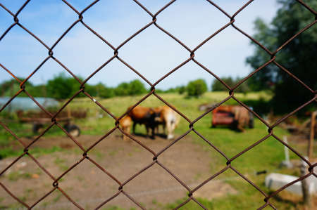 A closeup shot of a rusty lattice with the blurred farm in the background