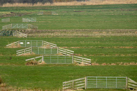 A wide shot of a grassy field with split-rail fences