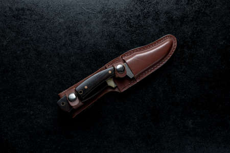 An overhead shot of two fixed knives with brown handle in a brown case on black background