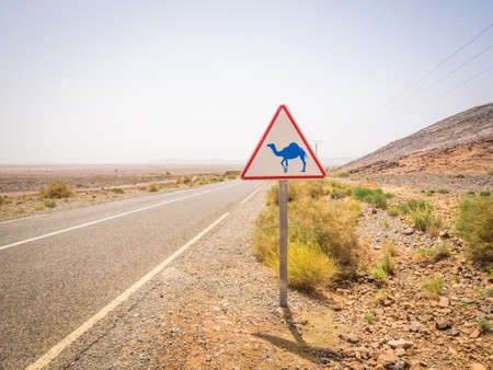 A camel crossing road sign on the road during the daytime