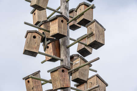 Several birdhouses attached to a wooden pole during daytime Banque d'images