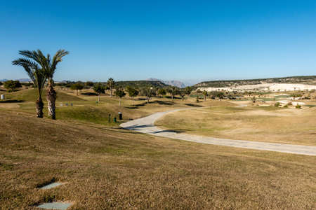 A beautiful view of a golf field in Spain with palm trees in the foreground 版權商用圖片