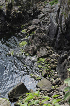 A high angle shot of a riverbank with stones covered with algae