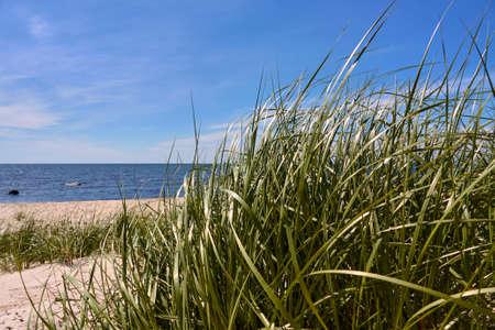 A beautiful shot of Baltic sea beach on the southern coast of Bornholm island, Denmark