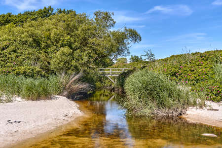 Oleaen Stream - the longest waterway on Bornholm island flowing into the Baltic sea near Slusegaard, Denmark Standard-Bild