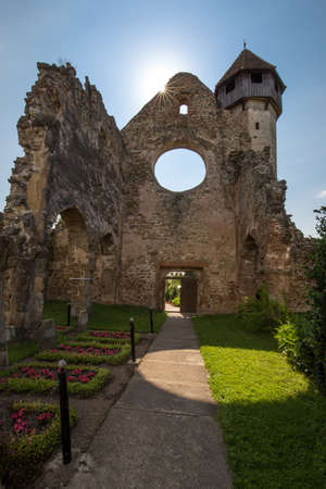 The Carta Monastery surrounded by greenery under the sunlight in Romania