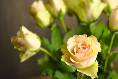 A closeup shot of a beautiful yellow rose on a blurred background