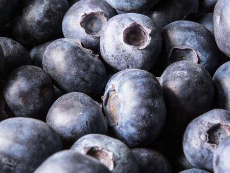 closeup of fresh blueberries in soft focus Standard-Bild