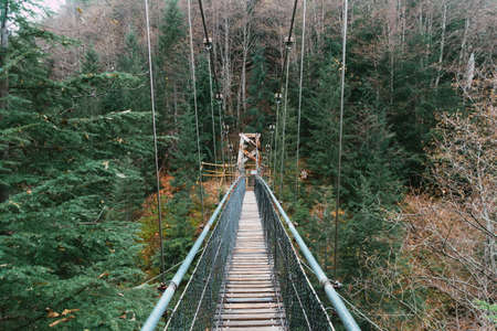 A stunning shot of a hanging bridge in the middle of a forest surrounded by trees on a cool day