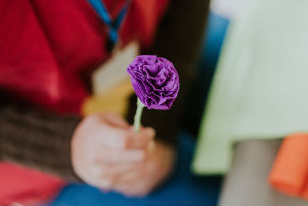 A selective focus shot of a purple rose help in a person's hand