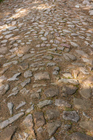 A vertical shot of a cobblestone street ground, perfect for background