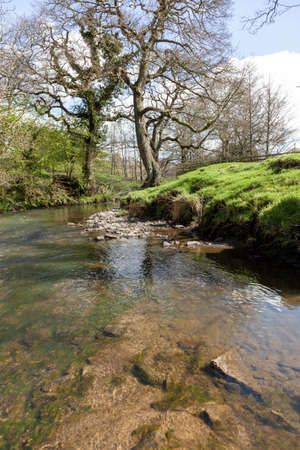 The River Noe surrounded by trees and rocks covered in mosses under the sunlight in the UK