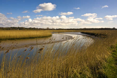 The River Alde surrounded by fields under the sunlight and a blue sky in the UK