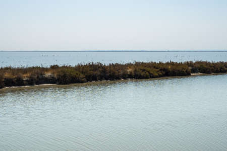 A long islet with grasses in the small town of Margherita di Savoia in Apulia, Italy 스톡 콘텐츠