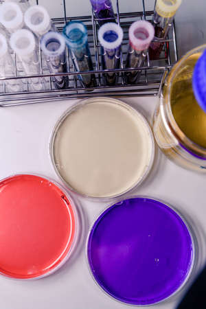 A vertical high angle closeup shot of petri dishes and laboratory tubes used for coronavirus research