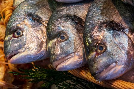A closeup shot of fresh sea bream at a fishmonger's