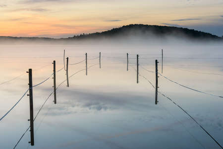 A fenced paddock on a foggy lake during sunset in Radasjon, Sweden
