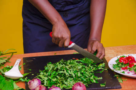 An African-American female cutting vegetables during a cooking show on yellow background