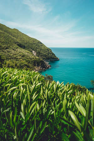 A vertical shot of a beautiful scenery of a sea surrounded by tall green mountains