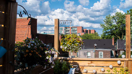 A beautiful rooftop adorned with flowers and decors overlooking the neighborhood