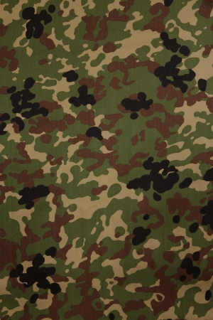 army camo: Japanese armed force flecktarn camouflage fabric texture background
