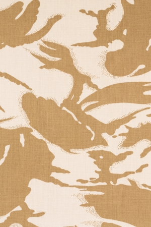 British armed force desert dpm camouflage fabric texture background photo