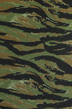 US vietnam green tigerstripe camouflage fabric texture background photo