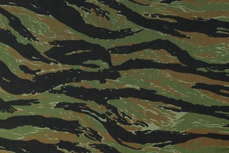 미국, 베트남, 녹색 tigerstripe 위장 패브릭 질감 배경